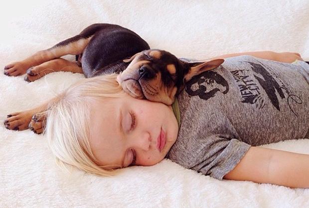amizade bebe e cao (10)