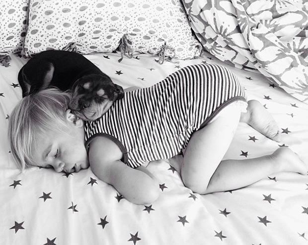 amizade bebe e cao (5)