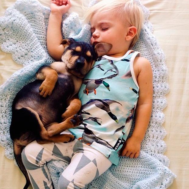 amizade bebe e cao (9)