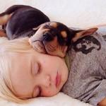 Amizade especial entre bebé e animal de estimação